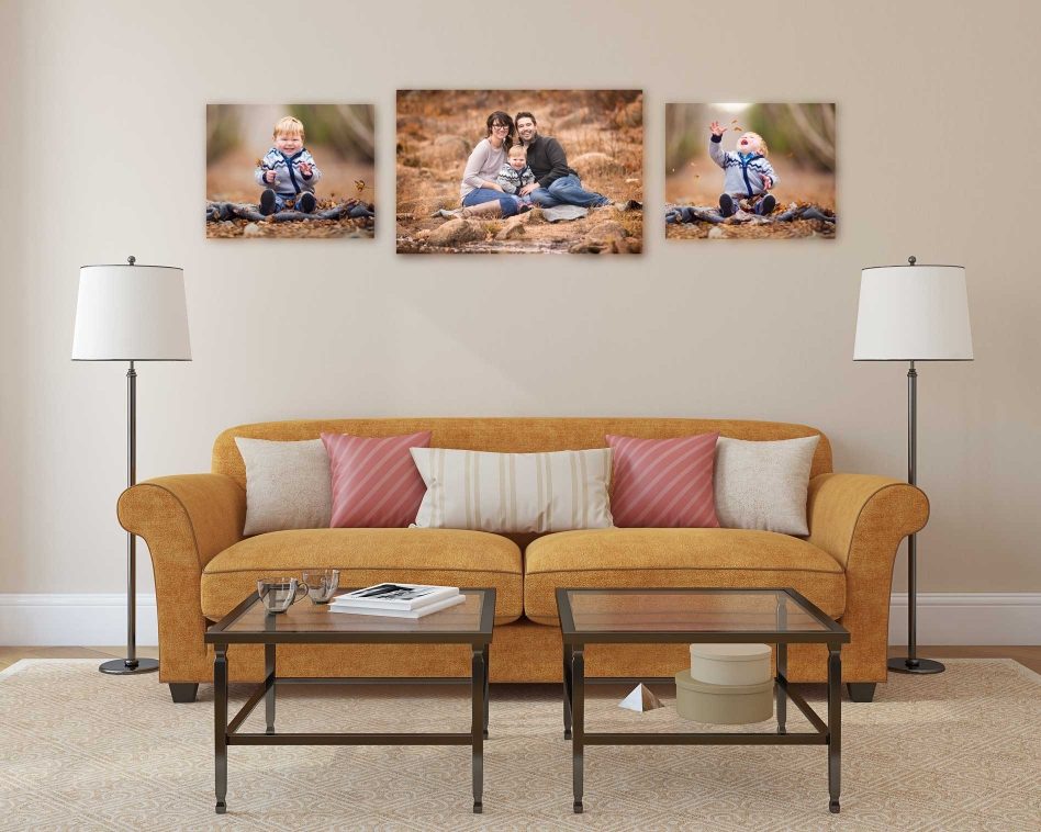 photography wall art display in living room