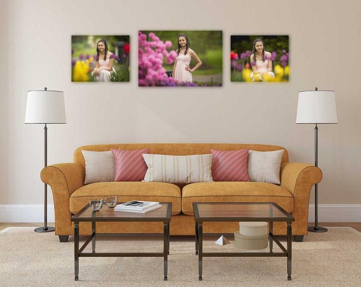 Three-panel senior portrait wall art arrangement in living room
